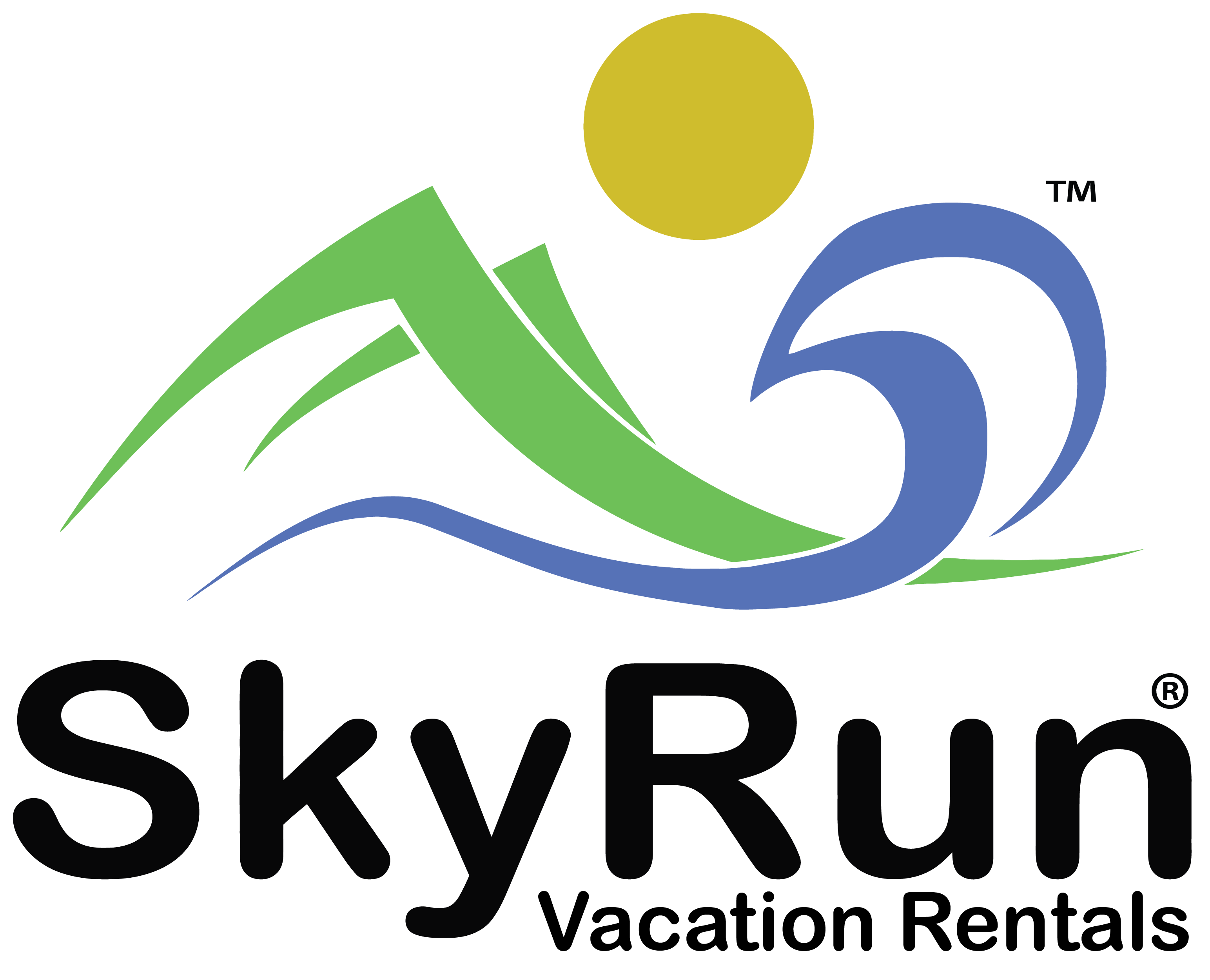 skyrun logo vertical original black